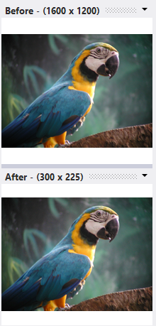 With the Ratio Aspect applied, the photos is resized to looks perfect without being squashed.