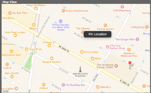 Using the Touchpad or Mouse, bring up the contextual menu at the location to add a Pin